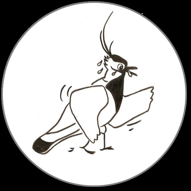 Logo Fitwalking Column